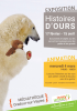 Histoires d'ours